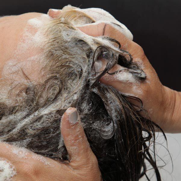 shampoing-bio