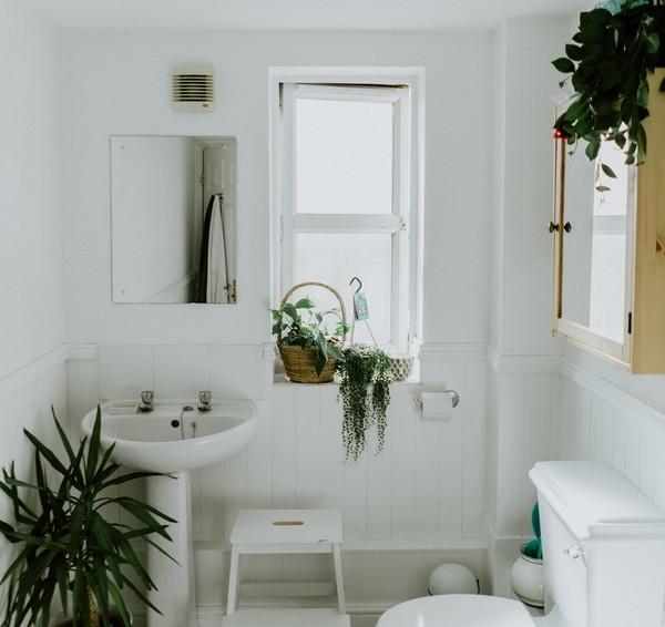 Cosmétiques naturels dans ma salle de bain